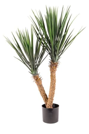 Kunstpflanze Yucca rostrata
