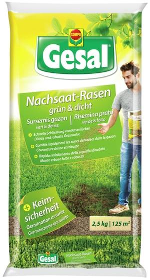 Per tutti i tappeti erbosi danneggiati, 2,5 kg