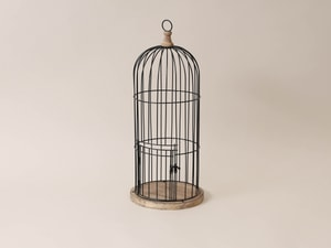 Gabbia decorativa per uccelli