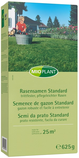 Semence de gazon Standard,  25 m2
