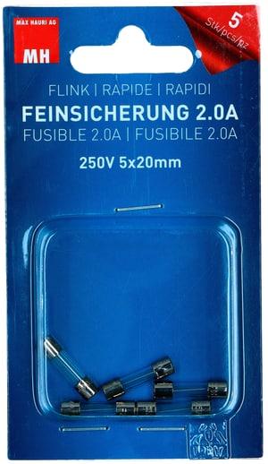 Feinsicherung Flink 2A 5 Stk.