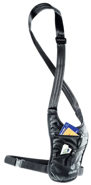 Security Holster
