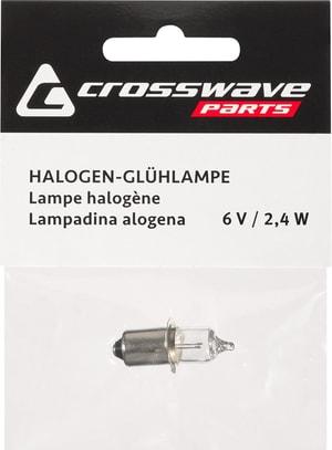 Ampoule halogène 6 V 2,4 A