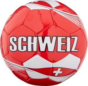 Fan Mini-Ball Schweiz