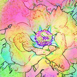 Avantgarde Serviette Saison, 20 Stk. 33x33 cm, Flower Spirit