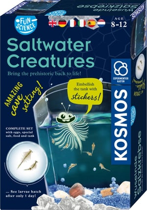 Salt Water Creatures Fun Science