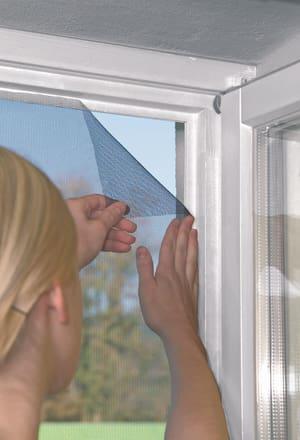Fenster STANDARD