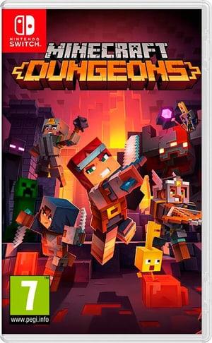 NSW - Minecraft Dungeons