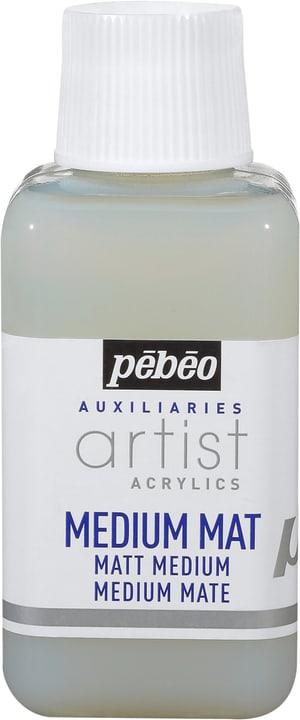 PÉBÉO Auxiliaries Artist Acrylics Matt Medium 250ml