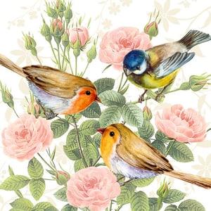 Atelier Tovaglioli, 20 Stk. 33x33 cm, Trio di uccello