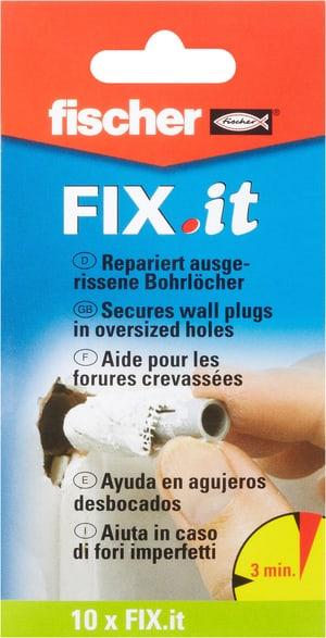 Fix IT Reparaturflies