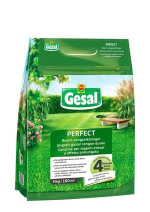 Rasen-Langzeitdünger PERFECT, 3 kg