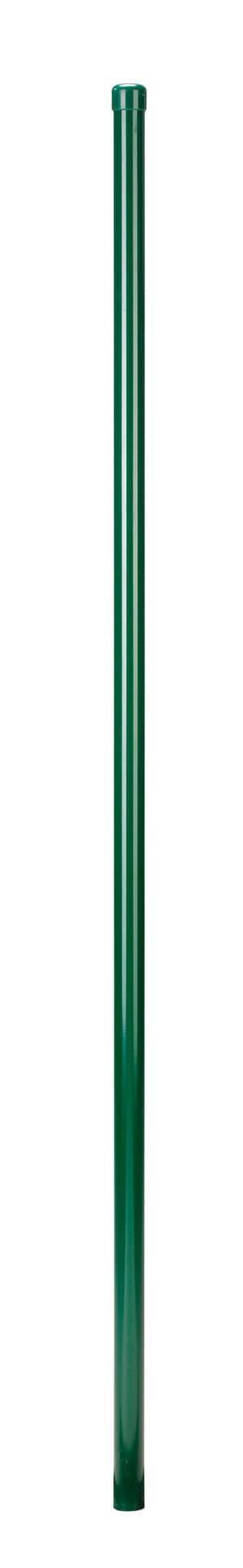 Palo tubolare Fix-Clip verde