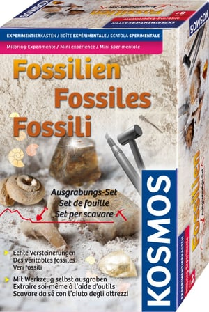 Ausgrabungs-Set Fossilien