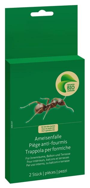 Ameisenfalle, 2 Stück