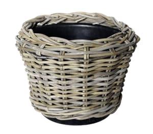 Dry Pot