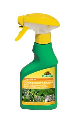 Promanal AF Grünpflanzen Schädlingsfrei, , 250ml