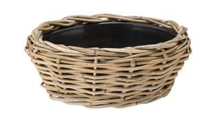 Dry Pot, aus Rattan
