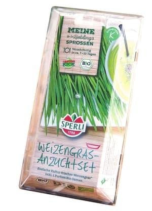 Bio Weizen Starter Set