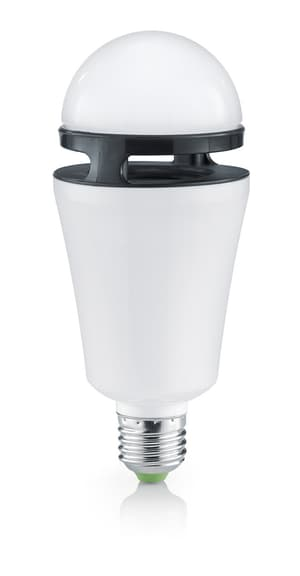 Bluetooth Lampe RGB mit Lautsprecher