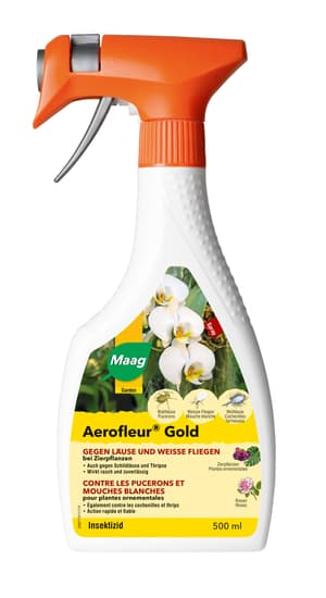Aerofleur Gold Spray, 500 ml
