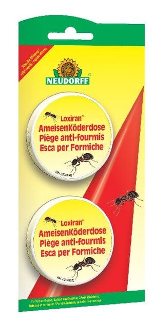 Loxiran AmeisenKöderdose