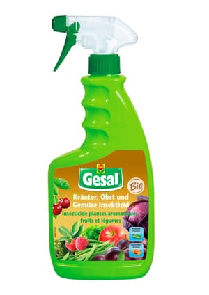 Kräuter, Obst und Gemüse Insektizid, 750 ml