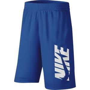 Dri-FIT Flex Shorts