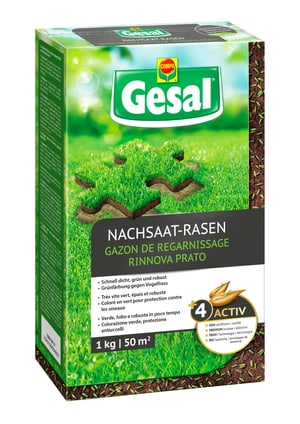 Gazon de regarnissage, 1 kg