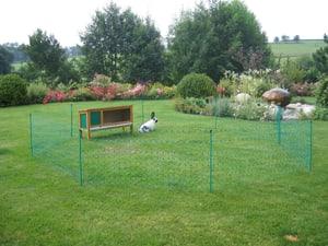 Filet clôture à lapins 12 m vert 65 cm avec piquets, conducteur
