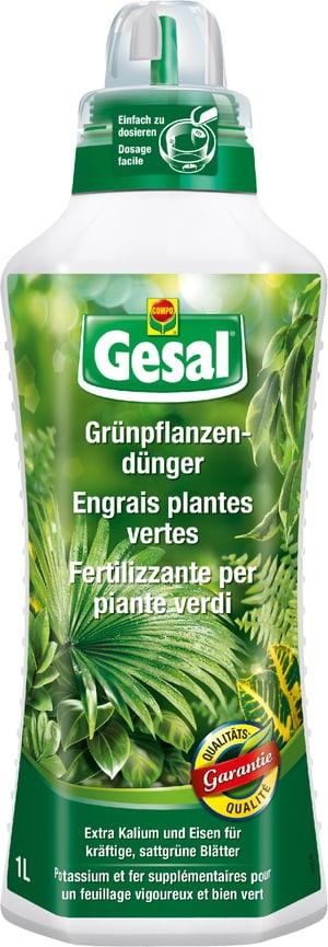 Grünpflanzendünger, 1 l