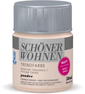 Trendfarbe Matt Tester Poudre 50 ml