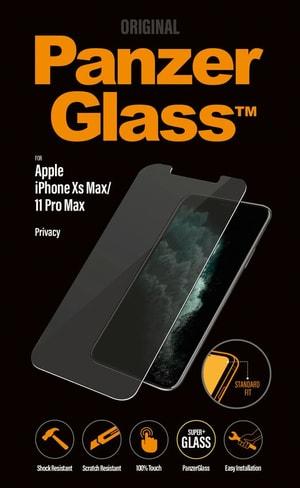 Display Glass Standart fit