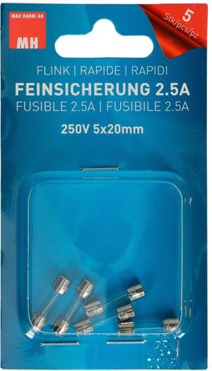 Feinsicherung Flink 2.5A 5 Stk.