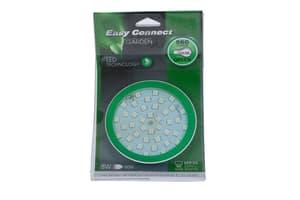 grün MR30/GU10 LED