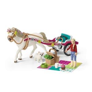 Kutsche für Pferdeshow