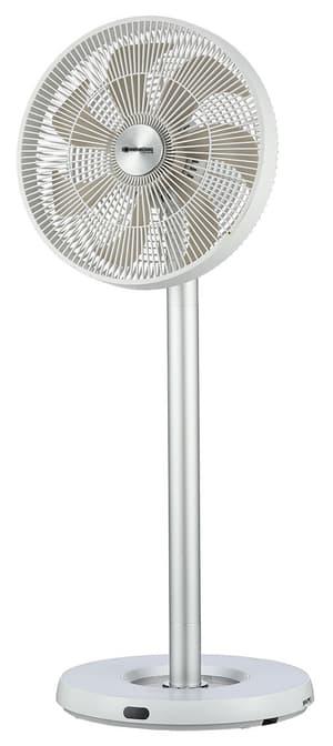 Flex Fan