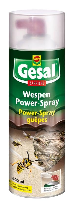 Hochwirksames Insektizid zur Beseitigung von Wespennestern, Sprühweite bis 4 m, 400 ml