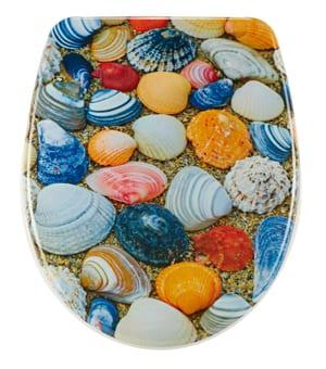 Nice Shell