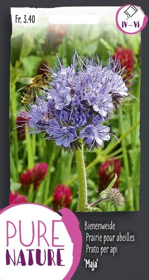 Gründüngung Bienenweide Maja 20g