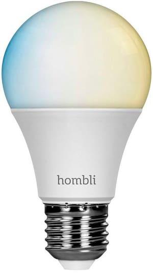 Smart Bulb E27 (9W) CCT