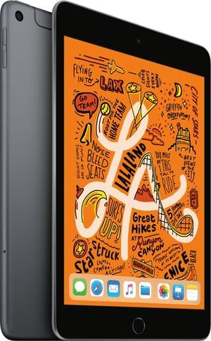 iPad mini 7.9 LTE 256GB spacegray