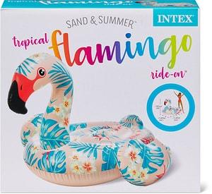 Tropical Flamingo Ride on