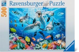 Dauphin Récif Puzzle 500 Parts