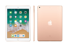 iPad Education WiFi 32GB gold