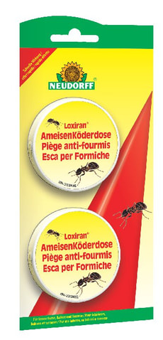 Loxiran Piège anti-fourmis