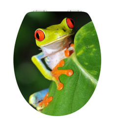 Siege de WC Mio Frog 3D