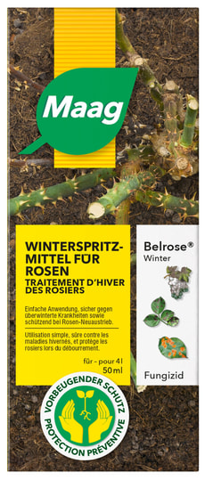 Belrose Winter, 50 ml