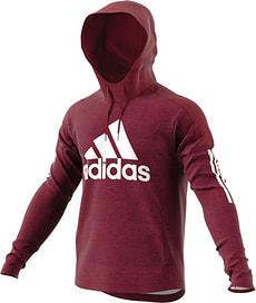 Men Sport ID Logo Hoodie