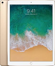 iPad Pro 12 WiFi 256GB gold